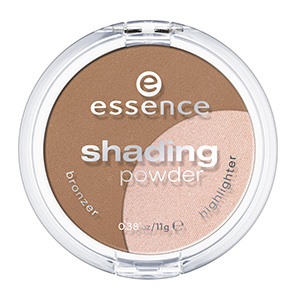 essence shading powder 01 regional