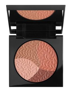 MULTICOLOR BLUSH POWDER