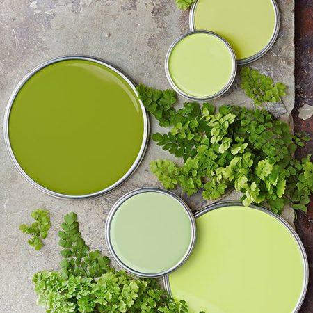 green mybeautypedia