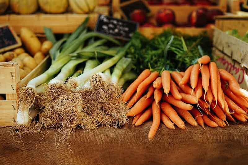 listeria verdura